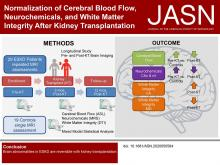 Normalization of Cerebral Blood Flow, Neurochemicals, and White Matter Integrity after Kidney Transplantation