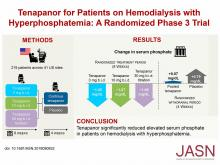 Efficacy and Safety of Tenapanor in Patients with Hyperphosphatemia Receiving Maintenance Hemodialysis: A Randomized Phase 3 Trial