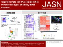 Targeted Single-Cell RNA-seq Identifies Minority Cell Types of Kidney Distal Nephron