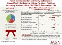 Renal, Cardiovascular, and Safety Outcomes of Canagliflozin by Baseline Kidney Function: A Secondary Analysis of the CREDENCE Randomized Trial