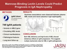 Mannose-Binding Lectin Levels Could Predict Prognosis in IgA Nephropathy