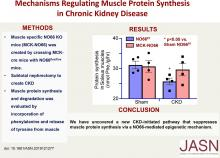 Mechanisms Regulating Muscle Protein Synthesis in CKD