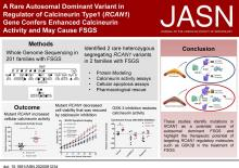 A Rare Autosomal Dominant Variant in Regulator of Calcineurin Type 1 (<em>RCAN1</em>) Gene Confers Enhanced Calcineurin Activity and May Cause FSGS