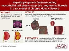 Hepatocyte Growth Factor–Secreting Mesothelial Cell Sheets Suppress Progressive Fibrosis in a Rat Model of CKD