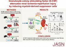 Granulocyte Colony-Stimulating Factor Attenuates Renal Ischemia-Reperfusion Injury by Inducing Myeloid-Derived Suppressor Cells