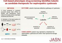 Cell-Based Phenotypic Drug Screening Identifies Luteolin as Candidate Therapeutic for Nephropathic Cystinosis