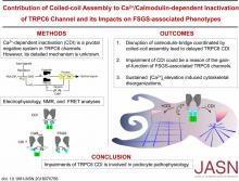 Contribution of Coiled-Coil Assembly to Ca<sup>2+</sup>/Calmodulin-Dependent Inactivation of TRPC6 Channel and its Impacts on FSGS-Associated Phenotypes