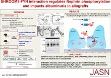 SHROOM3-FYN Interaction Regulates Nephrin Phosphorylation and Affects Albuminuria in Allografts