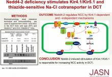 Renal Tubule Nedd4-2 Deficiency Stimulates Kir4.1/Kir5.1 and Thiazide-Sensitive NaCl Cotransporter in Distal Convoluted Tubule
