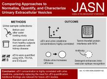 Comparing Approaches to Normalize, Quantify, and Characterize Urinary Extracellular Vesicles