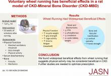 Voluntary Wheel Running Has Beneficial Effects in a Rat Model of CKD-Mineral Bone Disorder (CKD-MBD)
