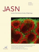 Journal of the American Society of Nephrology: 23 (4)
