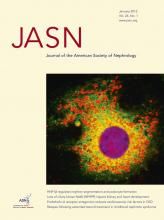 Journal of the American Society of Nephrology: 24 (1)