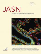 Journal of the American Society of Nephrology: 24 (3)