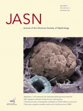 Journal of the American Society of Nephrology: 24 (4)