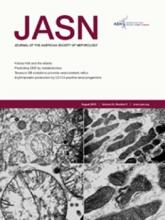 Journal of the American Society of Nephrology: 24 (8)