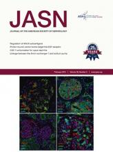 Journal of the American Society of Nephrology: 26 (2)