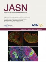 Journal of the American Society of Nephrology: 27 (12)