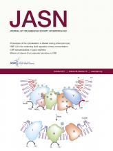 Journal of the American Society of Nephrology: 28 (10)