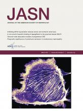 Journal of the American Society of Nephrology: 28 (3)