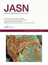 Journal of the American Society of Nephrology: 28 (6)
