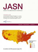 Journal of the American Society of Nephrology: 29 (1)