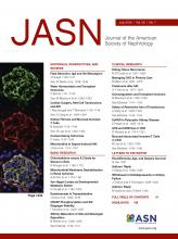 Journal of the American Society of Nephrology: 30 (7)