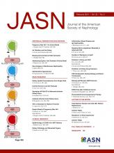 Journal of the American Society of Nephrology: 32 (2)