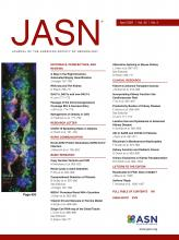Journal of the American Society of Nephrology: 32 (4)