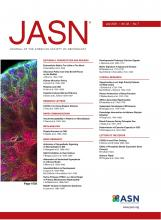 Journal of the American Society of Nephrology: 32 (7)